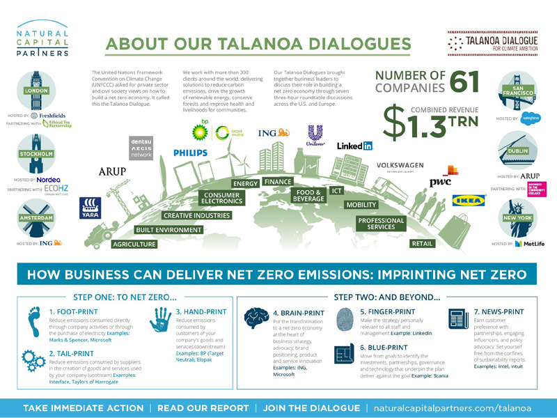 Natural Capital Partners' Talanoa Dialogue: The Role of Business in Getting to Net Zero